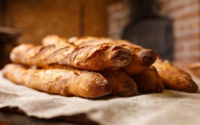 2 Offres emploi en apprentissage à la Boulangerie La Fournée Thibérienne à Thiviers